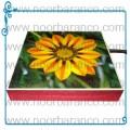 سنگ نورانی با تصویر گل