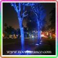 نورپردازی درختان کنار خیابان