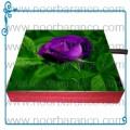 سنگ نورانی با تصویر گل بنفش